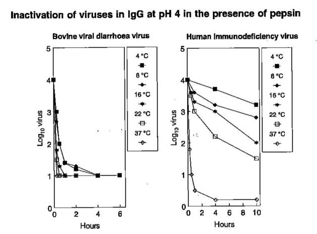 Blood viral inactivation IgG