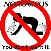 norovirus-2
