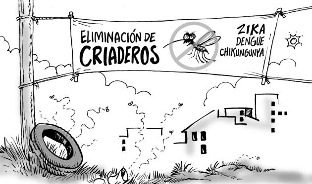 Criaderos Aedes 16_Opinión_01_1p01
