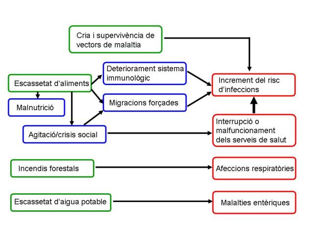 ENSO potencials efectes salut pública