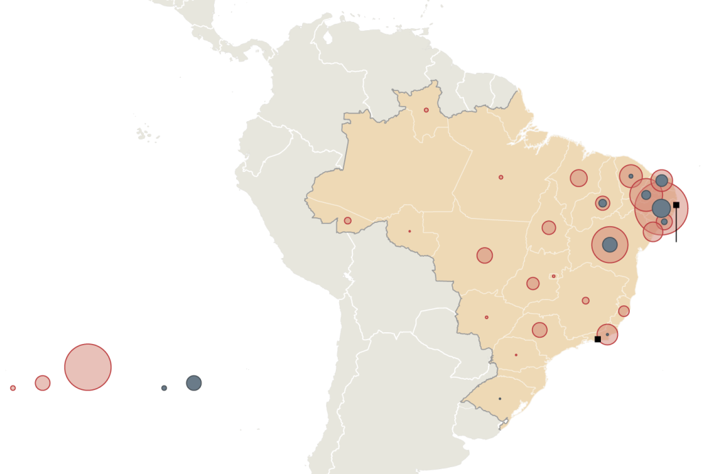 microcephaly in Brazil from nyt